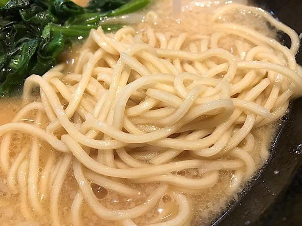 麺屋 義國/背脂しょうゆ味玉らーめん