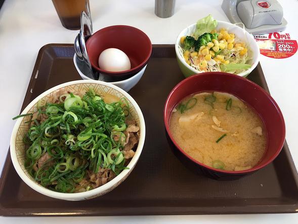 すき家 464号千葉NT白井店/牛丼 並 + ねぎ玉 + サラダセット(豚汁)