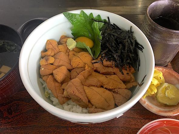 季節料理 魚吉/うに丼 一枚盛り
