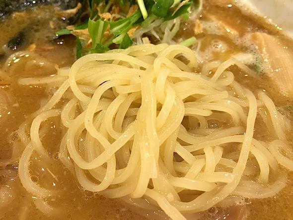 ガガナラーメン/GaGaNa Ramen 極/GaGaNa ホルモンらーめん