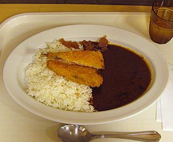 Curry Kitchen カレキチ 早稲田店/アジフライカレー